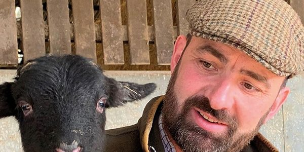 New lease of life for rare breed livestock