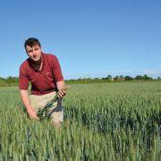 Precision decision aims to optimise arable margins
