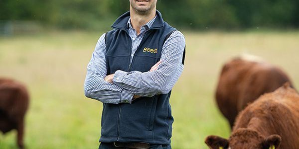 Guaranteed price provides certainty for beef farmers