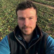 Good strategy key for effective weed control in potatoes