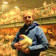Protect people and poultry from red mite