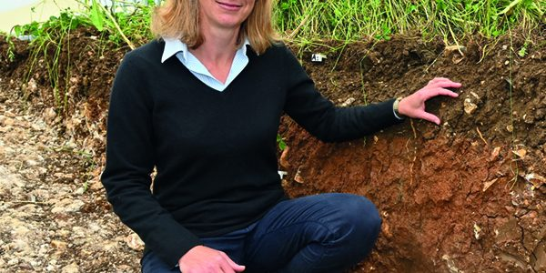 Conservation agriculture trial yields promising early results
