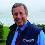Silage variability prompts concerns over protein energy balance