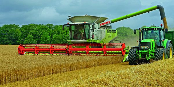 Decent harvest prospects as combines roll into crops