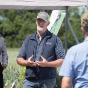 A growing role for cover crops on your farm
