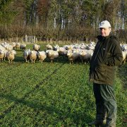 How grazing winter cereals can aid soil biology
