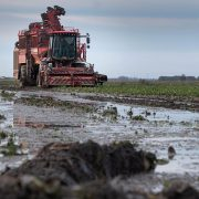 Processor and growers clash over beet support package