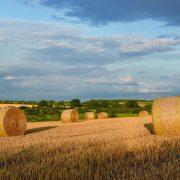 Autumn start-date for pilot environmental scheme