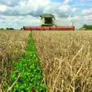 Network aims to tackle arable carbon footprint