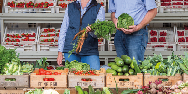 Benefits of farm shops to be studied by experts